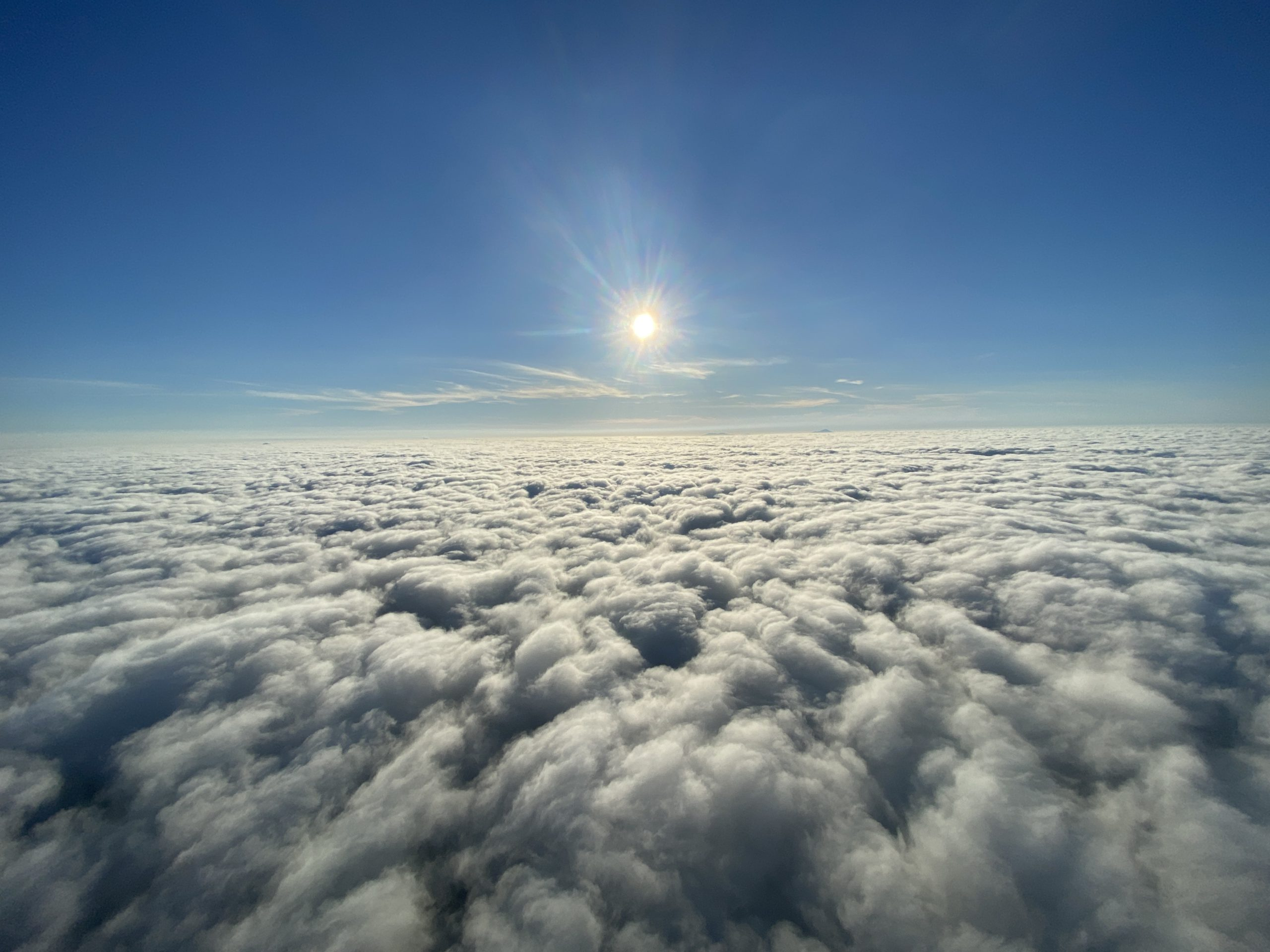 熱気球と雲海