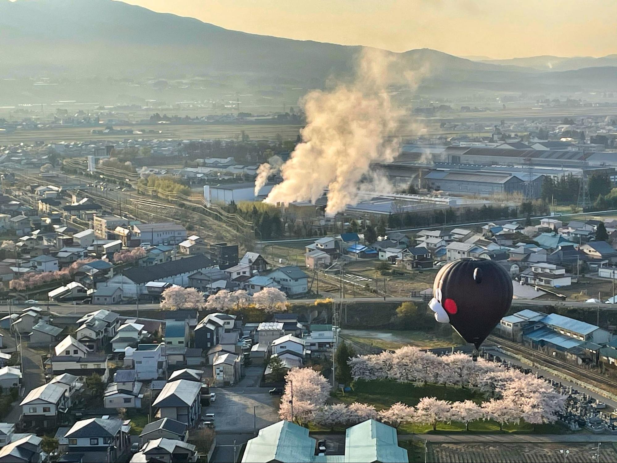 熱気球と桜